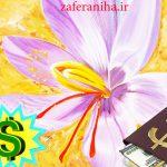 مرکز اصلی خرید عصاره زعفران سحرخیزان صادراتی