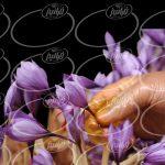 با توجه به زمان بر بودن آماده کردن زعفران به صورت سنتی، با حذف مرحله سابیدن و دم کردن زعفران و برای صرفه جویی در زمان ، هزینه و همچنین سهولت استفاده ، خرید اسپری زعفران با وزن ۱۱۰ گرم را به شما پیشنهاد می کنیم.